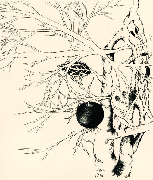 rhizome, 2013
